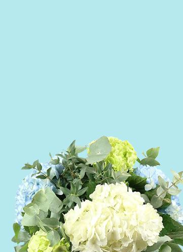Same day Flowers Gants Hill